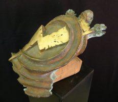 Blitzschildkröte